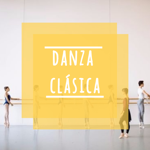 danza clásica web